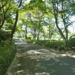 松の大廊下